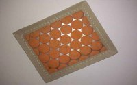 Orange Polyester Filter - Back